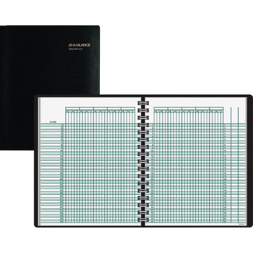 At-A-Glance 4-Person Undated Daily Appointment Book