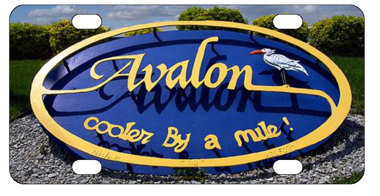 Avalon License Plate
