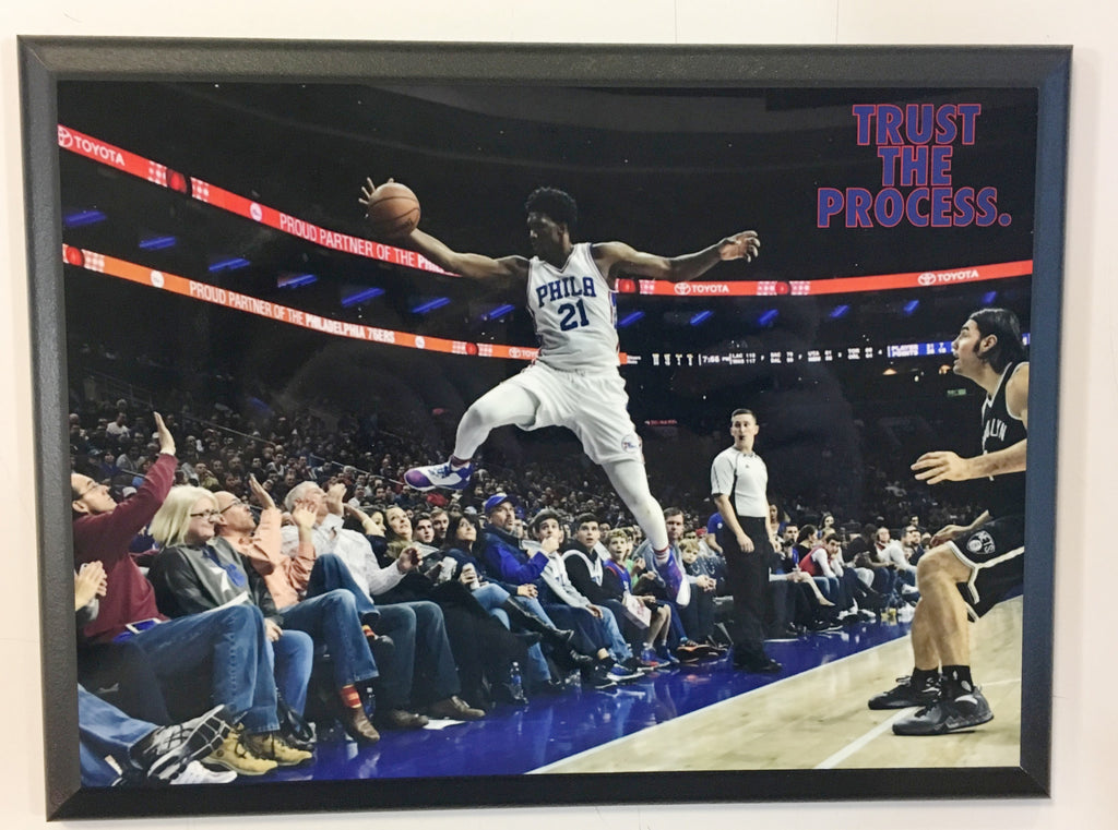 "Joel Embiid ""Trust the Process"" Dive into the Stands Plaque"