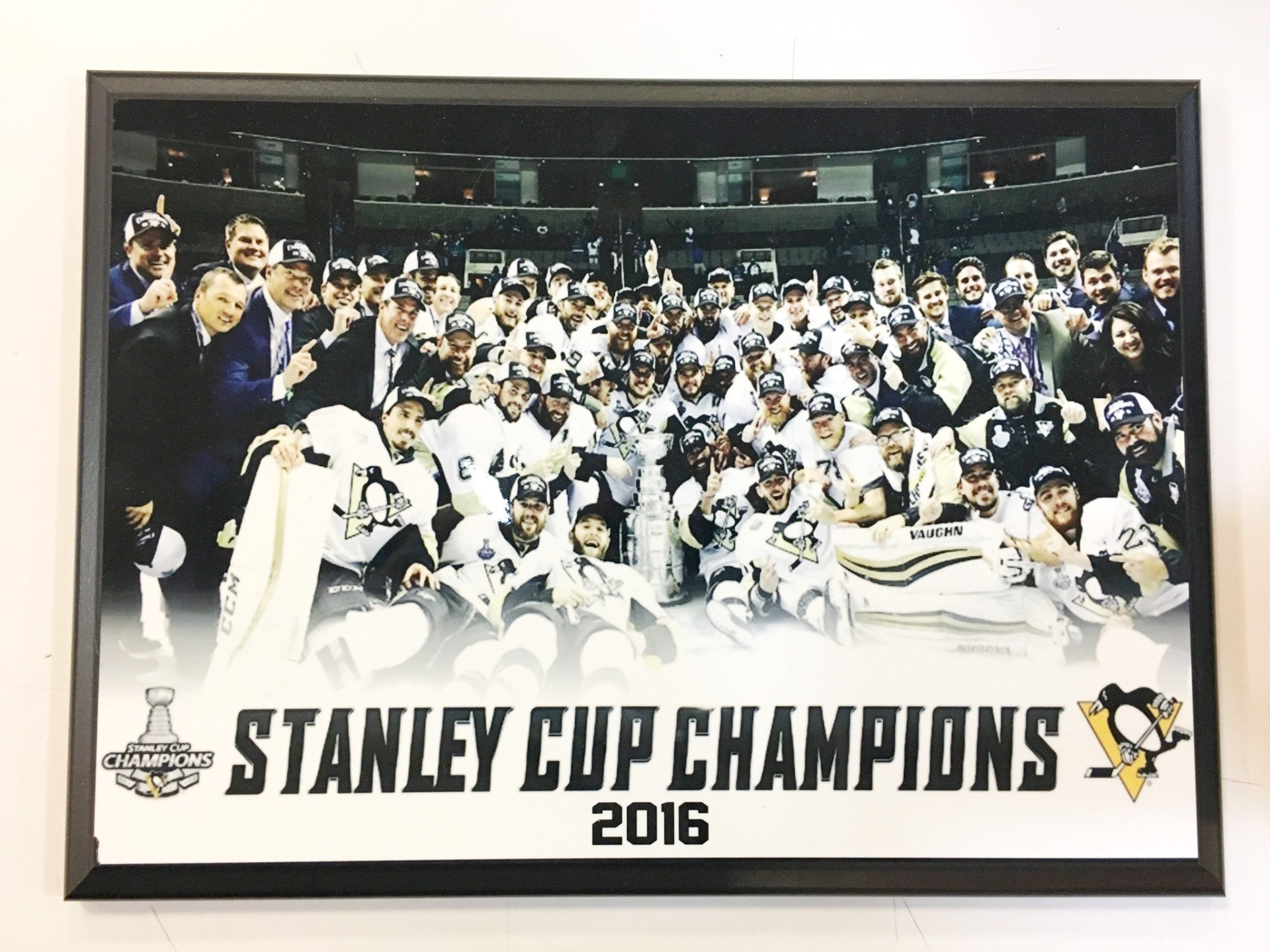 Pittsburgh Penguins 2016 Stanley Cup Champions Plaque