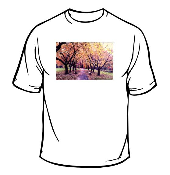 Trees And Leaves Scenic T-Shirt