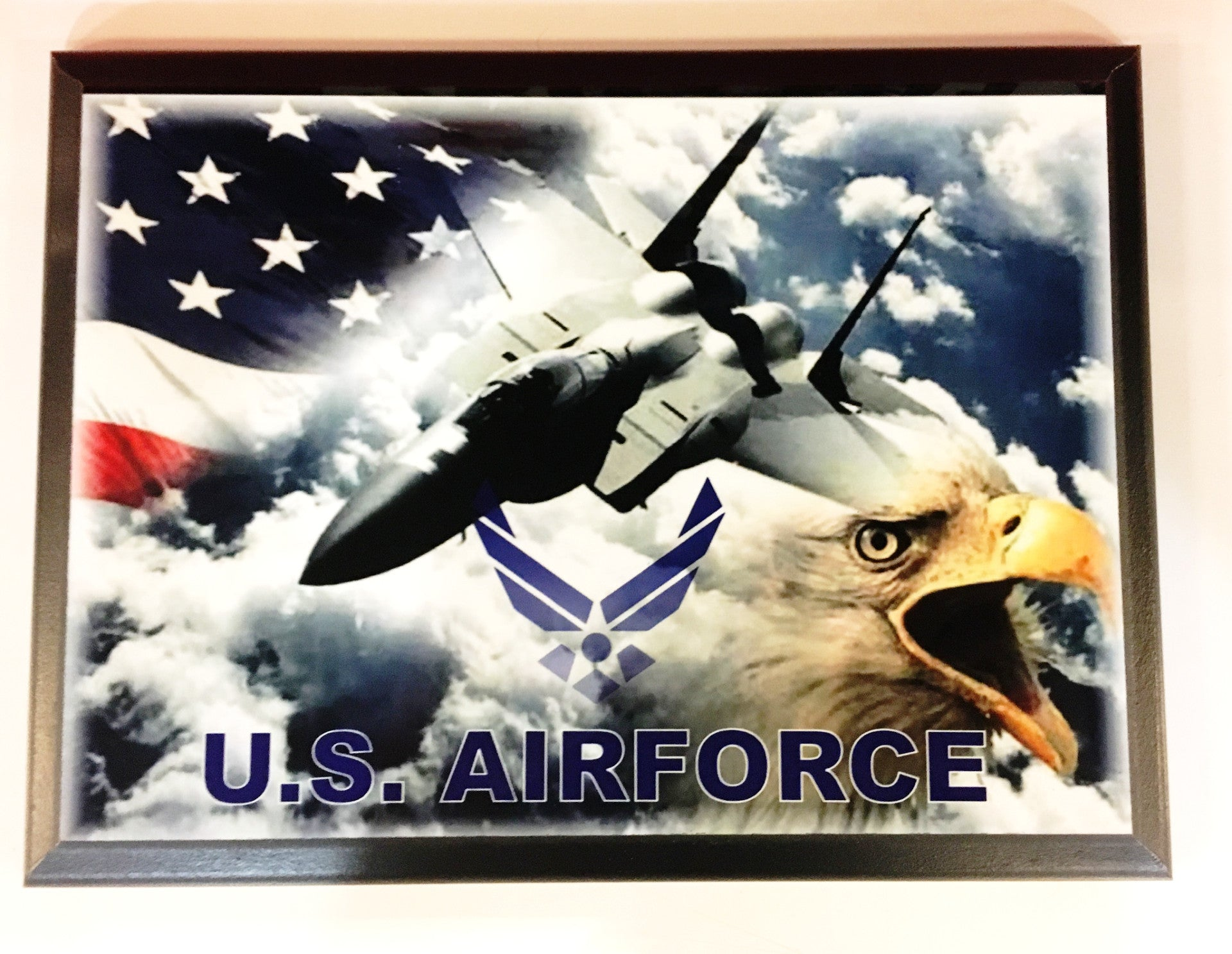 U.S. Air Force Eagle/Flag/Jet Plaque