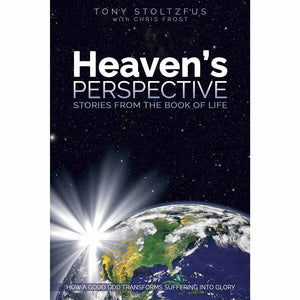 Heaven's Perspective: Stories from the Book of Life