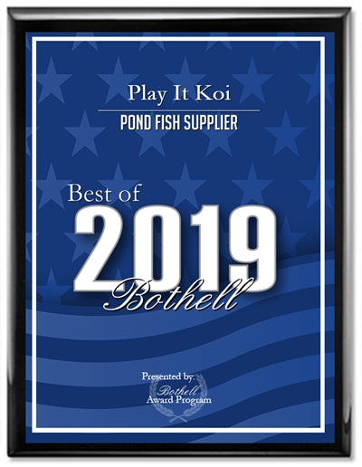 Play It Koi Best Pond Fish Supplier Bothell