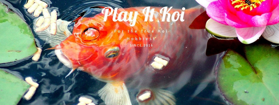 Play It Koi