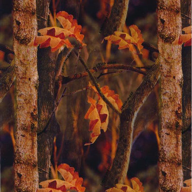 Fall Camouflage Hydrographic Film