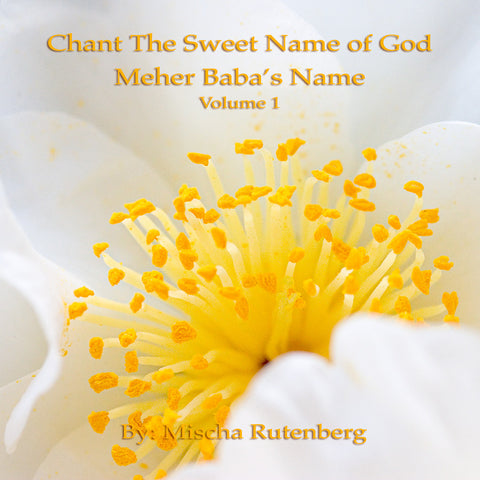 Chant The Sweet Name of God: Volume 1