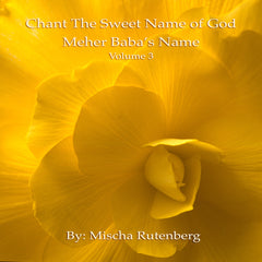 Chant The Sweet Name of God: Volume 3