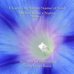 Chant The Sweet Name of God: Volume 7