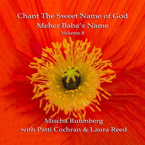 Chant The Sweet Name of God: Volume 8