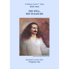 His Will, His Pleasure: Katie Irani
