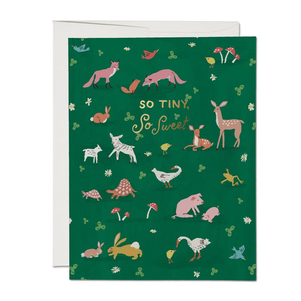 Tiny Animals Baby Card