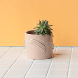Deco Planter - Blush