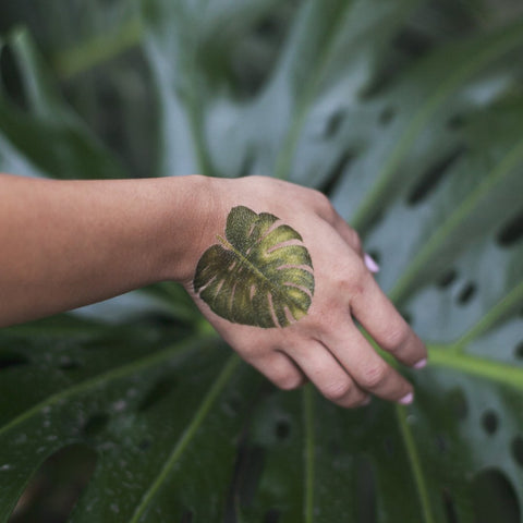 Tattly Monstera Leaf Tattoo