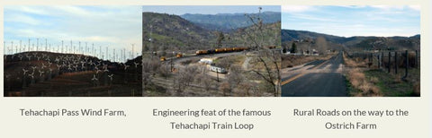 Highlights of Tehachapi