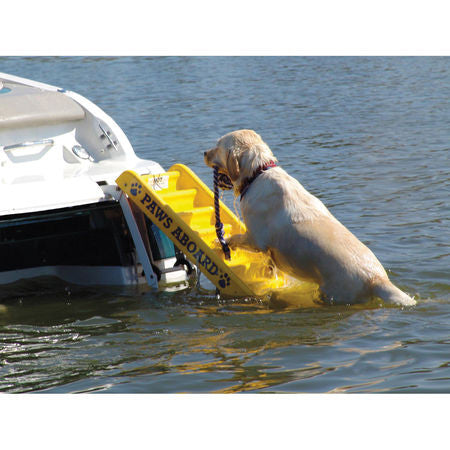 Doggy Pontoon Ladder