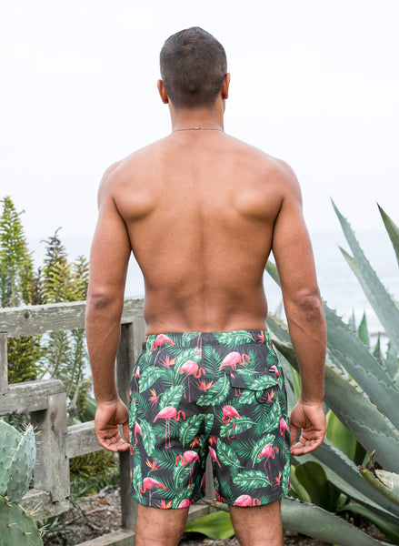 Hidden Flamingo Trunks