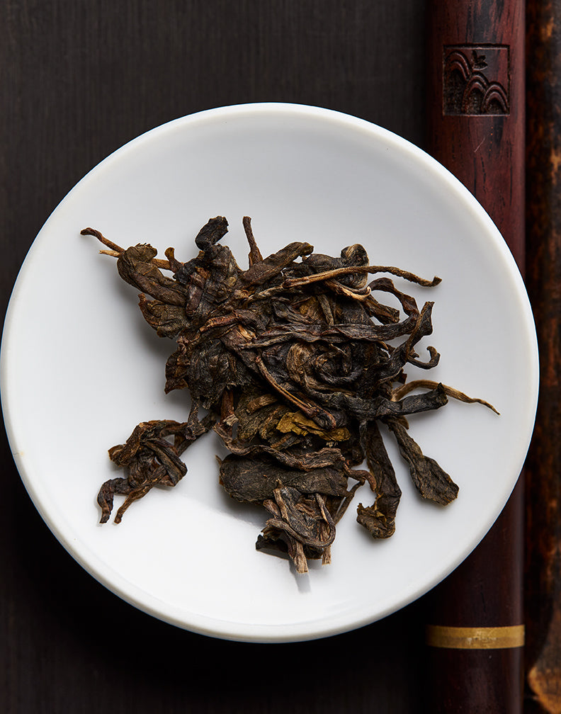Pu-erh's Ancient Roots