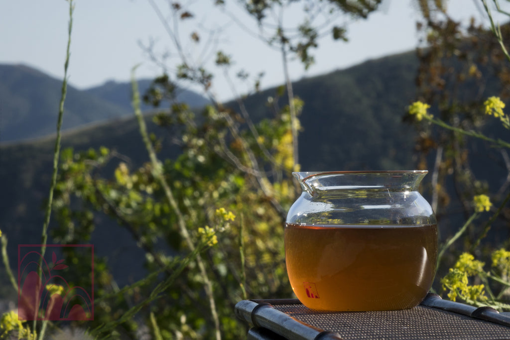 Drinking Tea in Memory of the Past