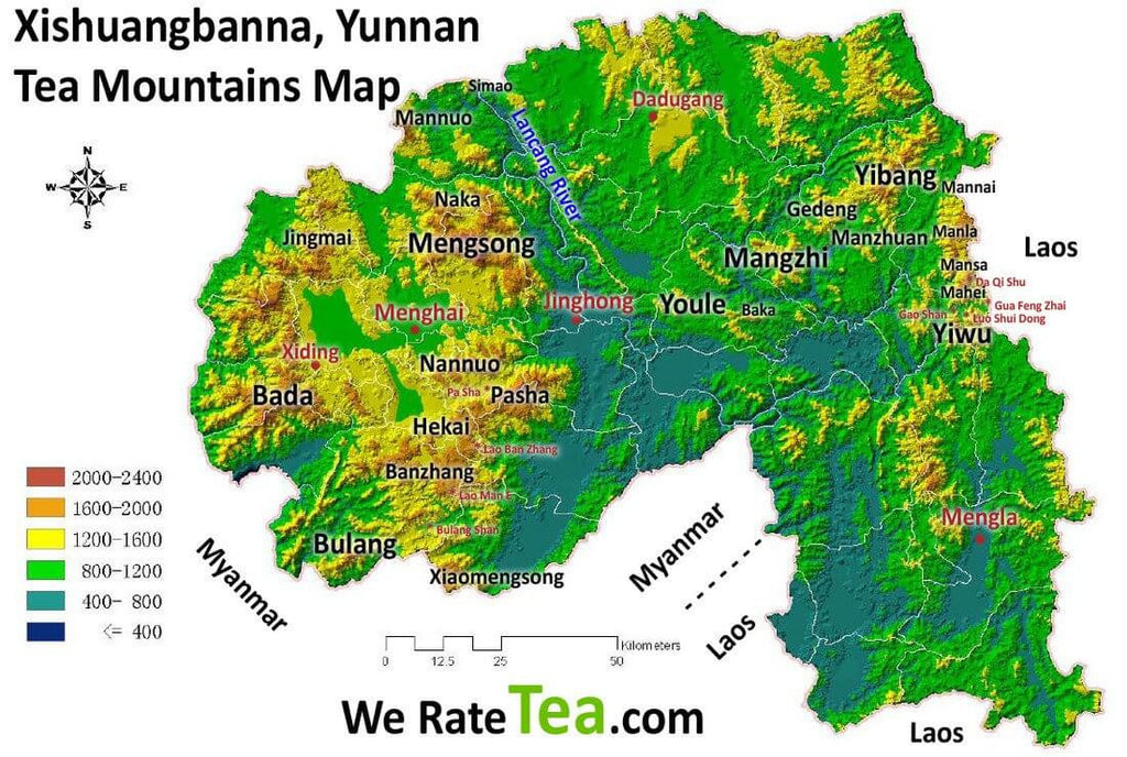 Comparing Famous Pu-erh Tea Mountains