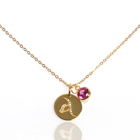 Initial Disc with Amethyst (February) Birthstone