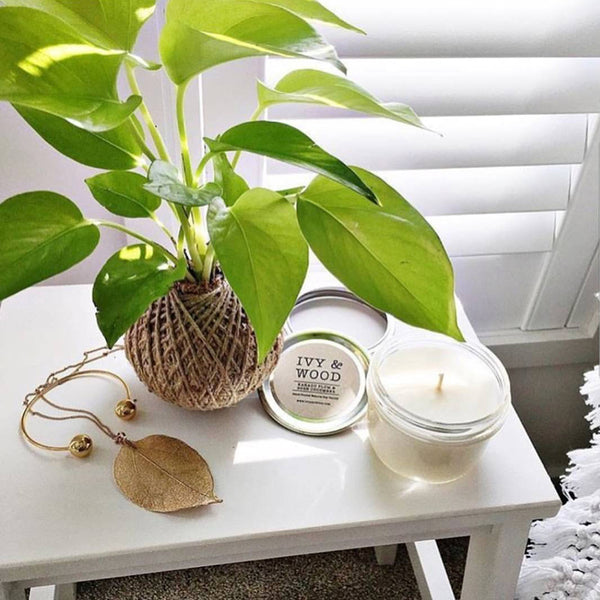 Lemongrass & Persian Lime Mason Jar Soy Candle - Ivy & Wood - Australian Made