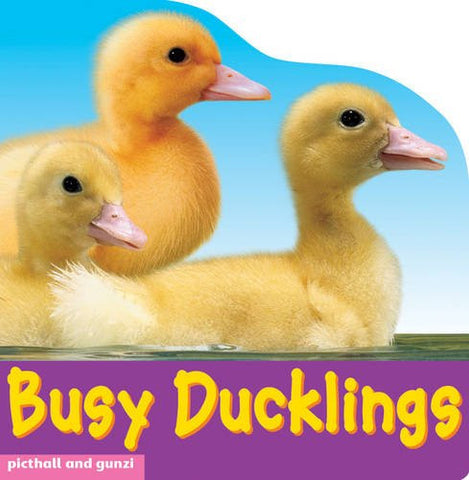 Busy Ducklings Board Book