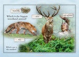 123 Nature Activity Cards