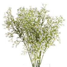 Load image into Gallery viewer, PLANTS - White Wildflower Spray (x3 Stems)