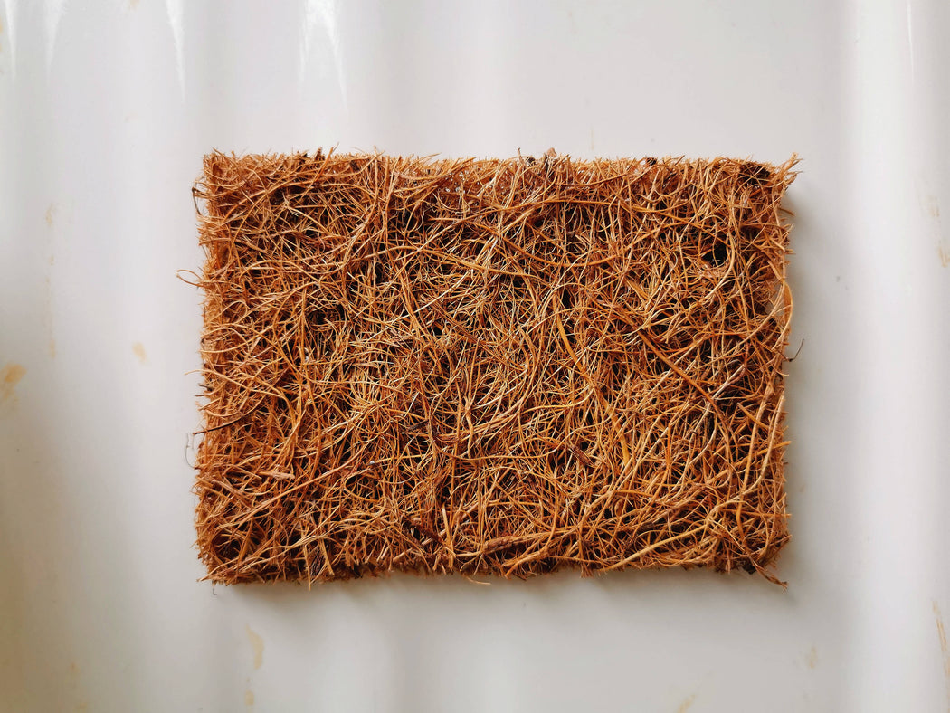 Coconut coir scourers (pack of five)