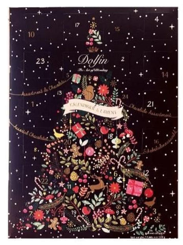 Dolfin Advent Calendar