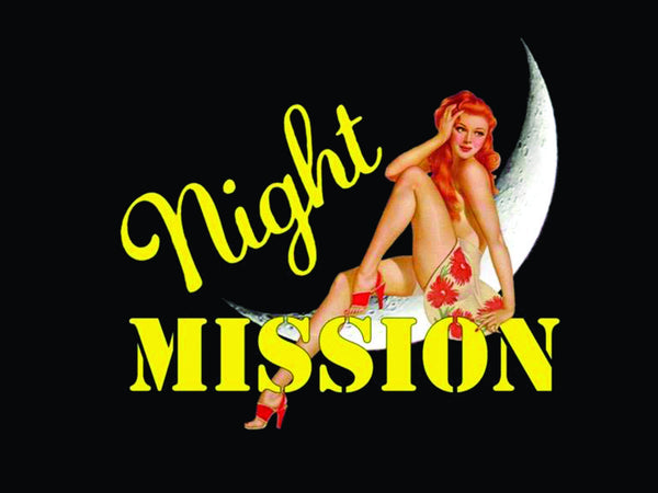 "A-26 ""Night Mission"" Pillow - CAF Gift Shop - 2"