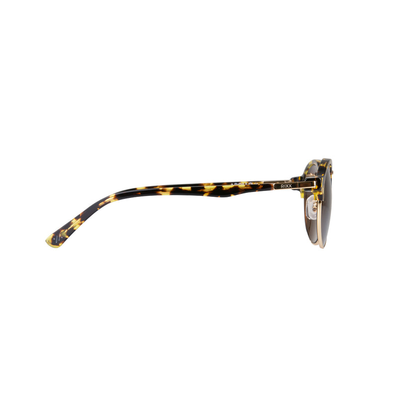 Apollo - Havana (Polarised) - RIXX Eyewear
