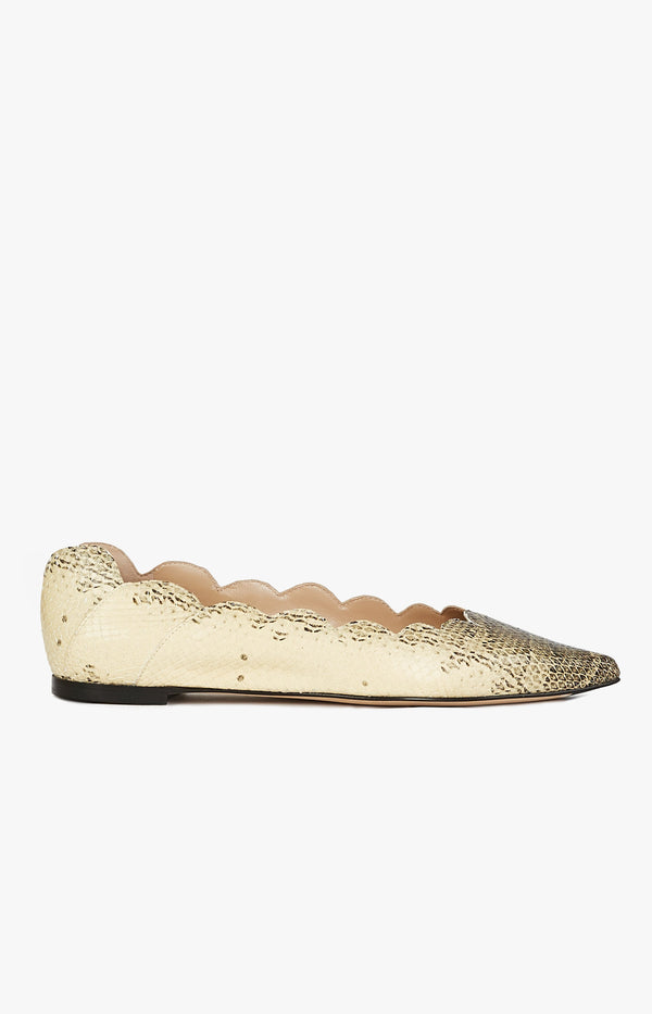 Pointy Lauren Ballerina Cloudy YellowChloé - Anita Hass
