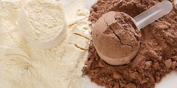 Best Protein for Muscle MASS