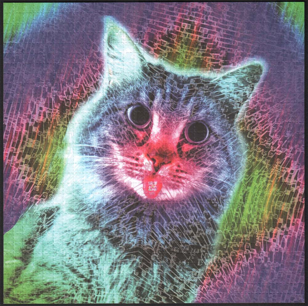 Trippy Kitty by Jessikah Angelo