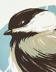 Bird Series | Chickadee