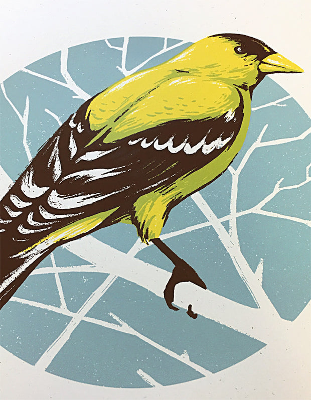 Bird Series | Goldfinch