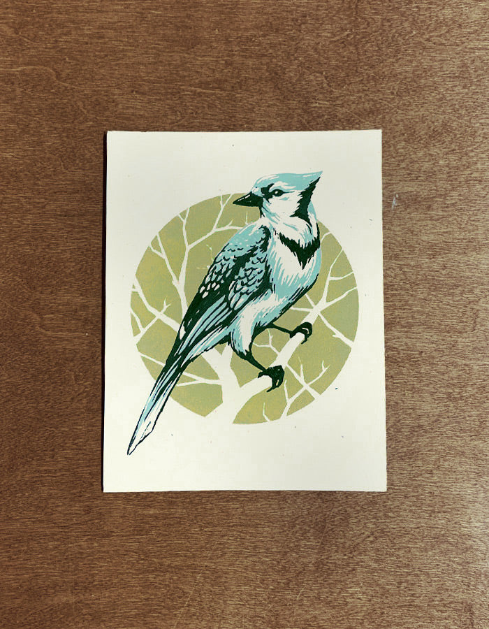 Bluejay Mini