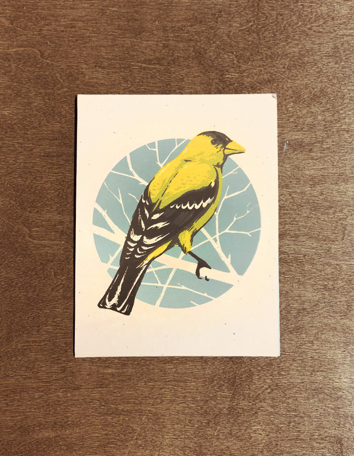 Golden Finch Mini