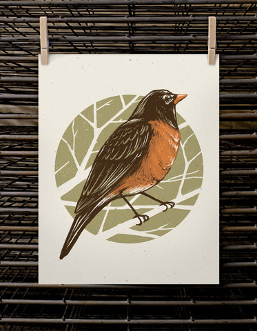 Bird Series | Robin