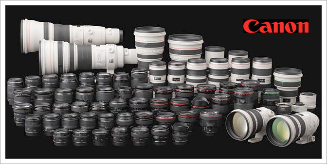 Which Canon Lenses Will Work With Your Camera