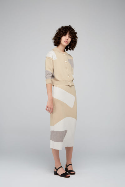 Max Color Block Skirt