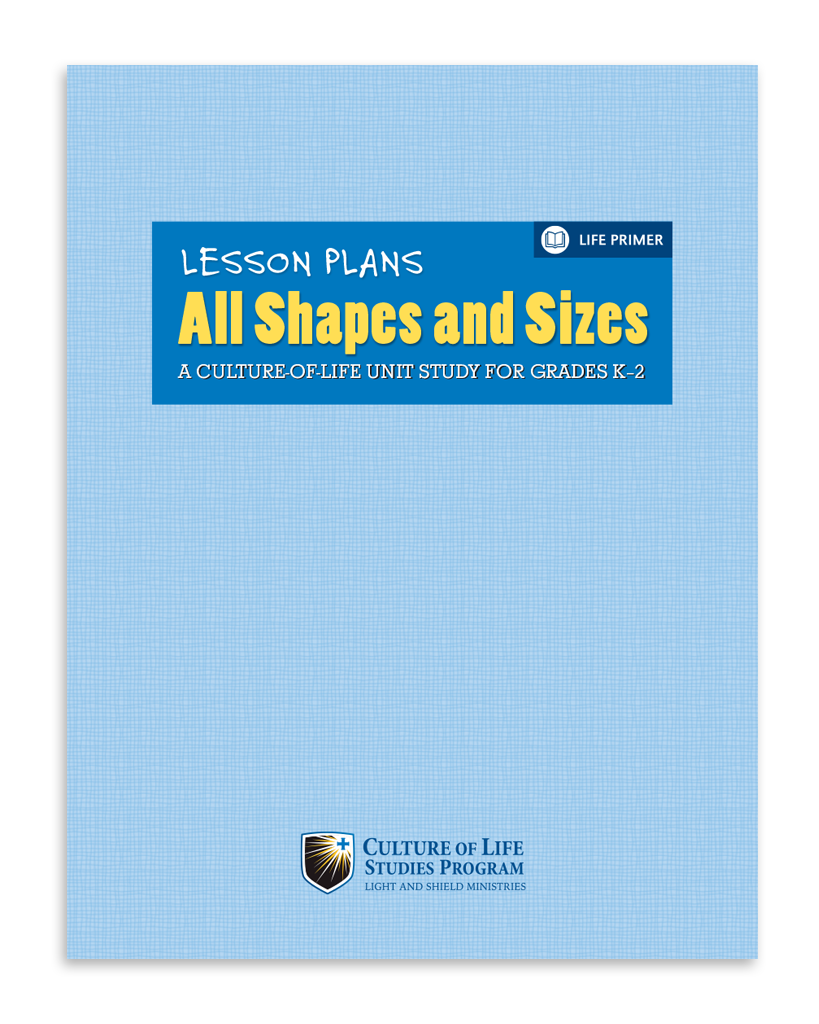 All Shapes and Sizes Lesson Plan (Digital Download)