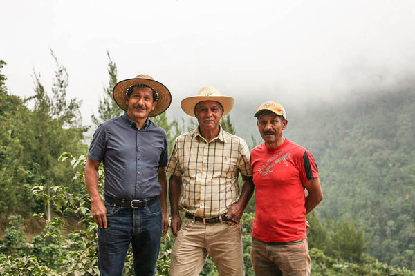 Tips for a Cause, Finca La Esperanza