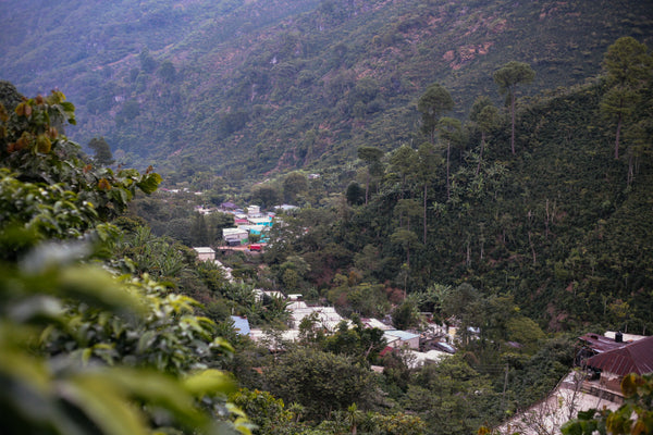Finca la Esperanza, Home to the Villatoros