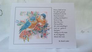 Greeting Card - 'Bluebirds'