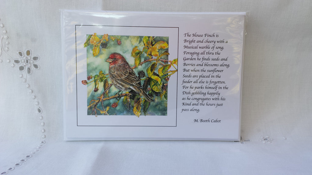 Greeting Card - Gift Set 2 - Northern Flicker, Mockingbird, Bluebird on Nandina, Cedar Waxwing, House Finch, Southern Screech Owl