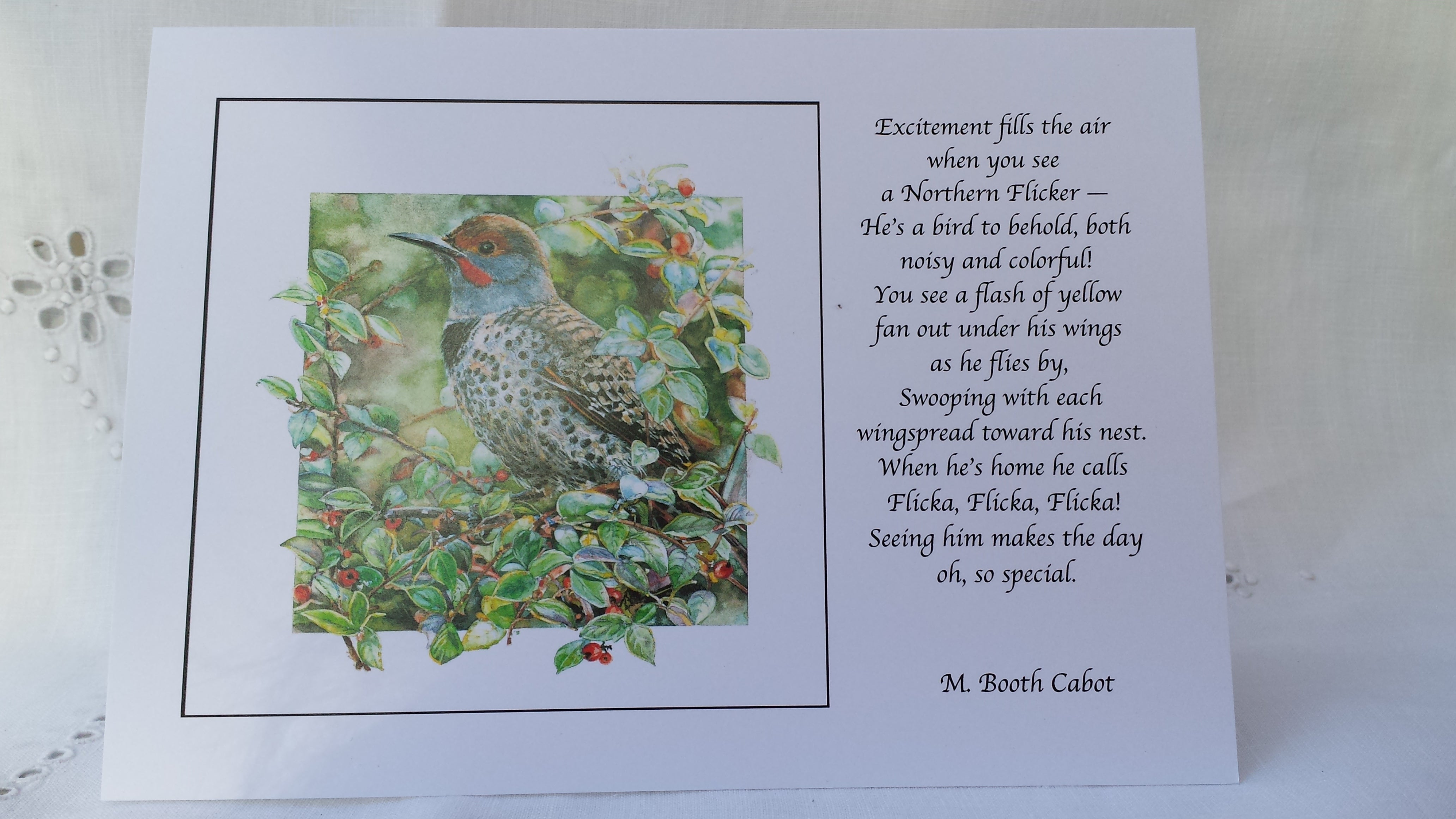 Greeting Card - 'Northern Flicker'