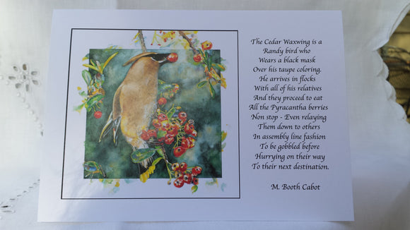 Greeting Card - 'Cedar Waxwing'
